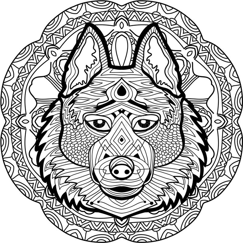 Coloring Page For Adults. Stern Husky On A Background Stock Vector ...