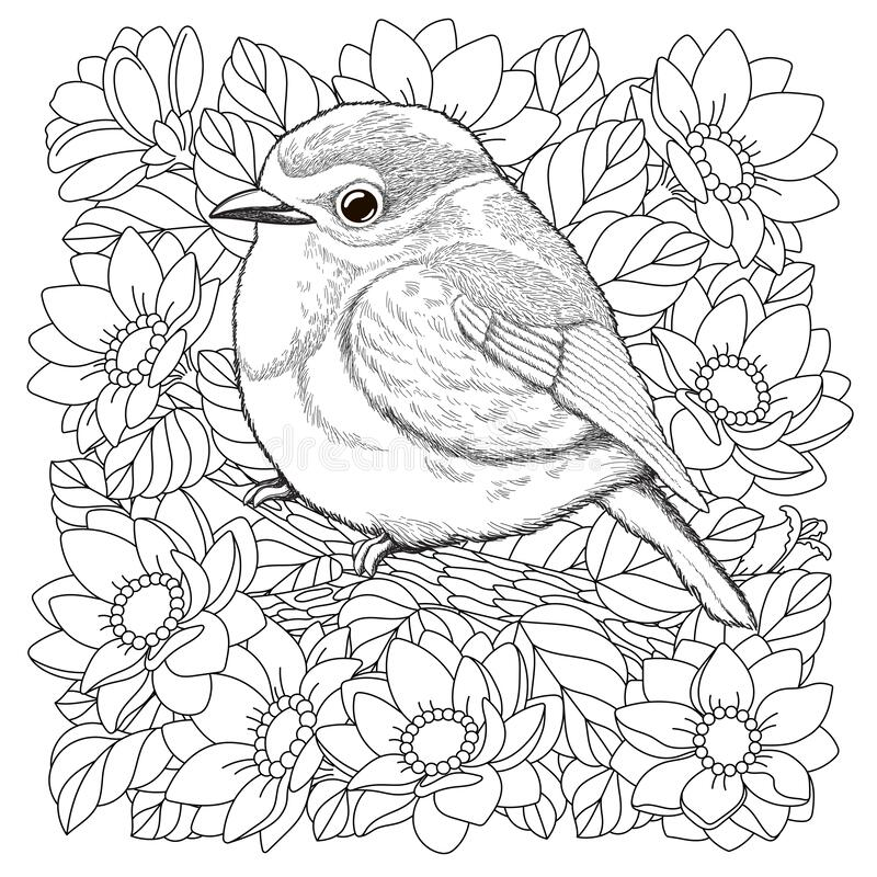 - Adult Colouring Bird Stock Illustrations – 720 Adult Colouring Bird Stock  Illustrations, Vectors & Clipart - Dreamstime