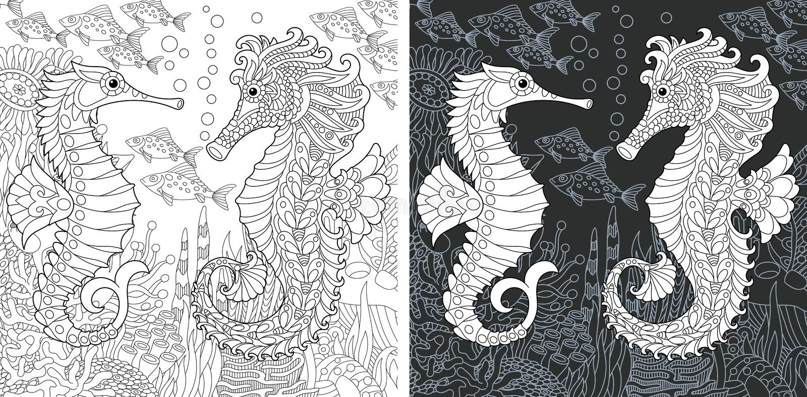 Coloring pages with sea horses stock photos
