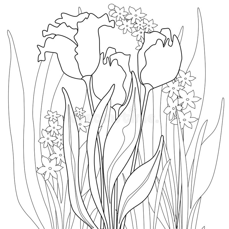 Coloring page book with decorative ornamental abstract floral elements black and white royalty free illustration