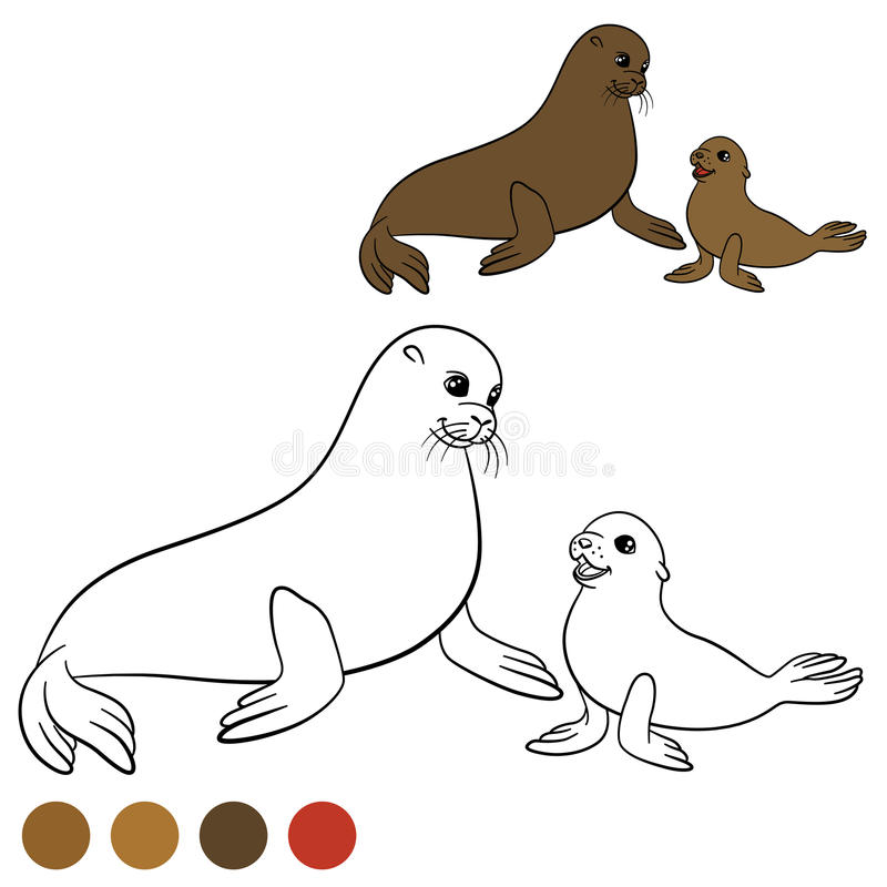 Coloring page with colors. Mother fur seal with her baby. royalty free illustration