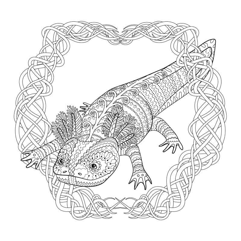 Salamander 21   Super Coloring   Dibujos de lagartijas, Páginas para  colorear, Lagartijas   800x800