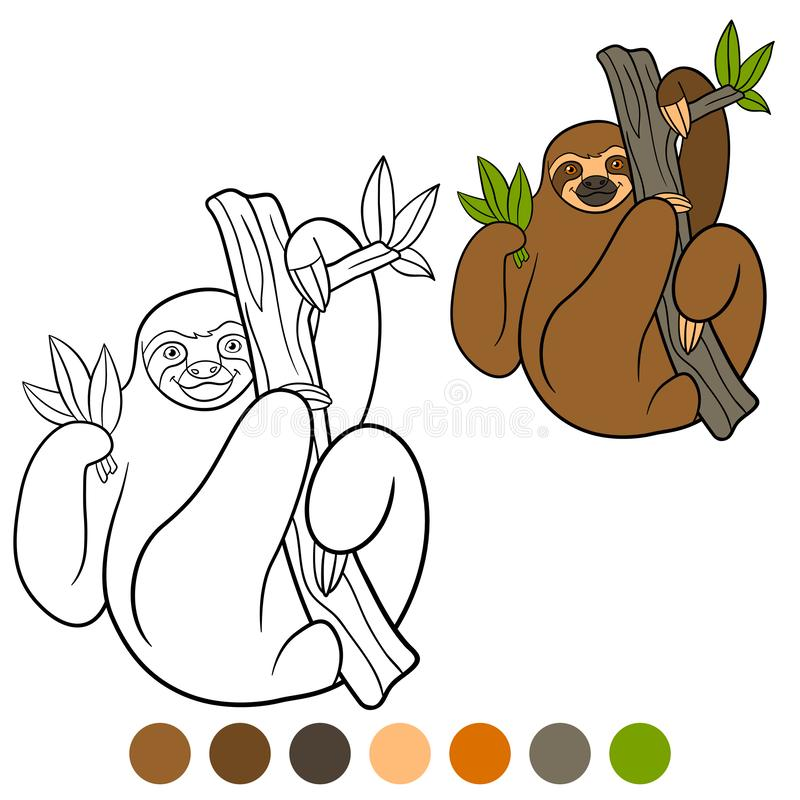 Coloring page. Cute lazy sloth hangs on the tree branch. And smiles vector illustration