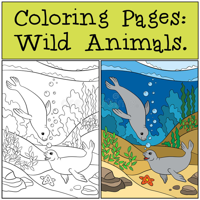 Coloring page with example. Two little cute seals. Coloring page with example. Two little cute seals swim underwater and smile royalty free illustration
