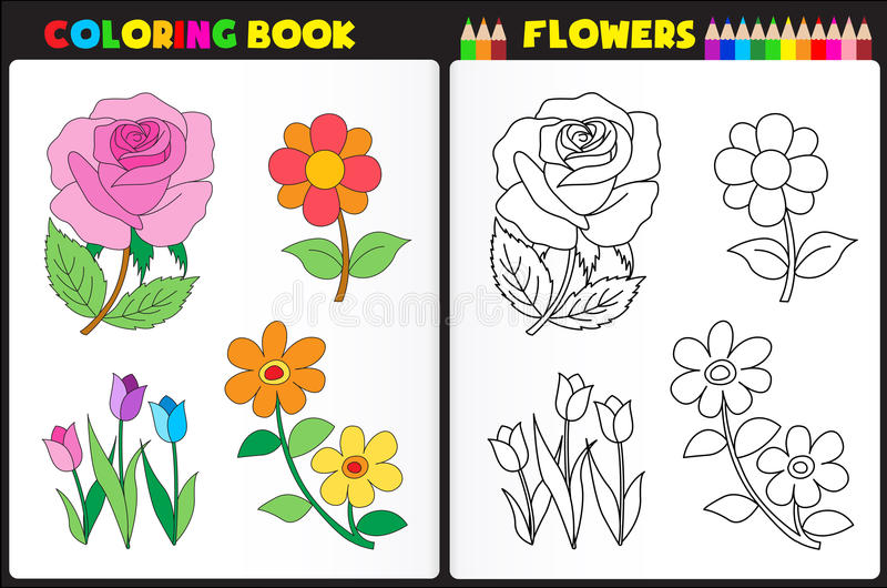 Coloring page flowers vector illustration
