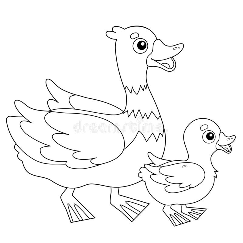 Free Coloring Page Outline Of Cartoon Duck With Duckling. Farm Animals. Coloring Book For Kids Royalty Free Stock Images - 166327399