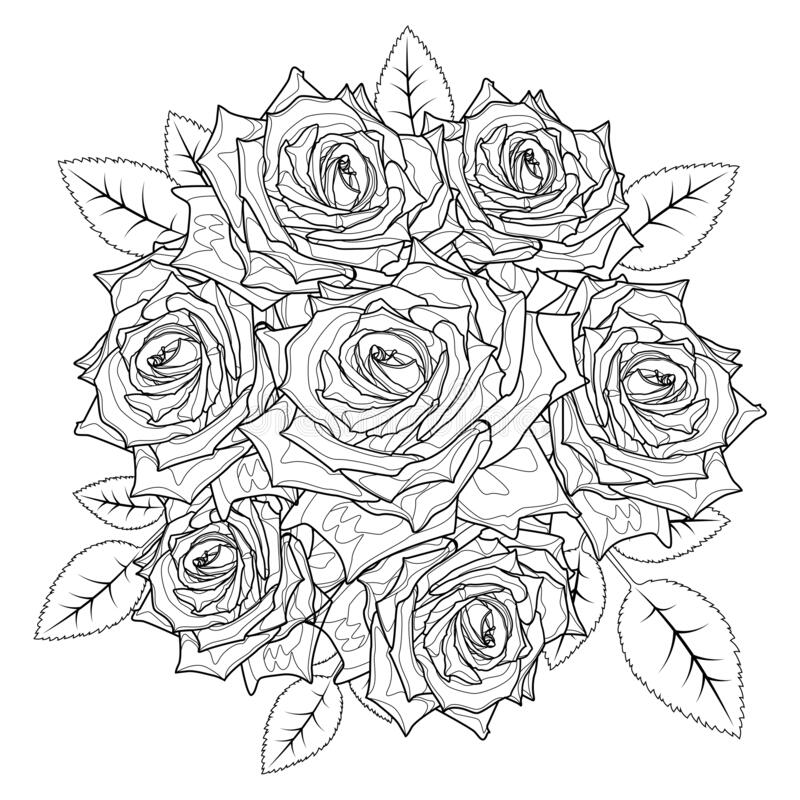 Coloring page rose - free coloring pages | 800x800