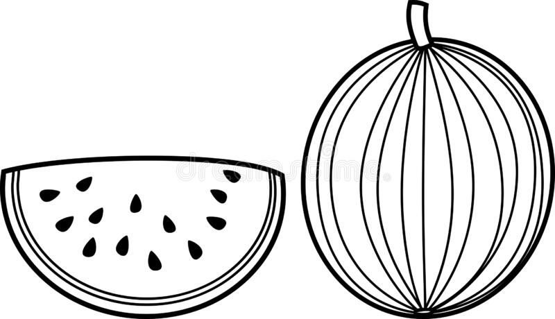 Coloring Page Watermelon Stock Vector Illustration Of Round 183955644