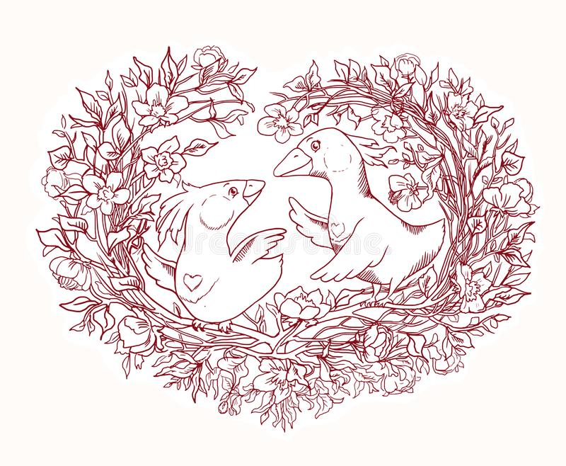 Funny valetine coloring page with a pair of birds in a heart- nest. Coloring page for Valentine`s Day. Beautiful illustration with a pair of birds curling the stock illustration