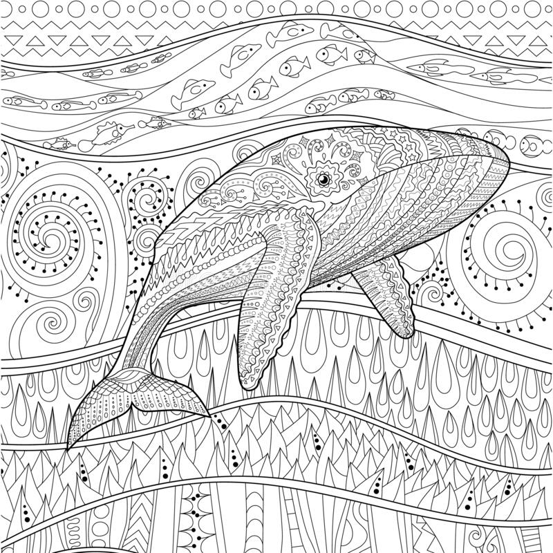 - Coloring Pages For Adult With Blue Whale Stock Vector - Illustration Of Blue,  Book: 175172907