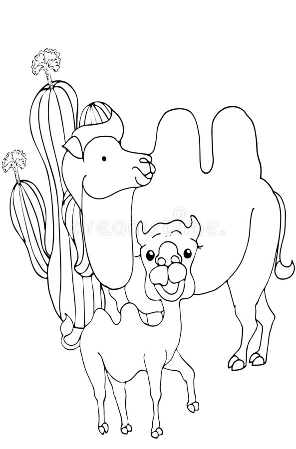 Coloring Pages Animals Cute Camel Stands And Smiles Stock