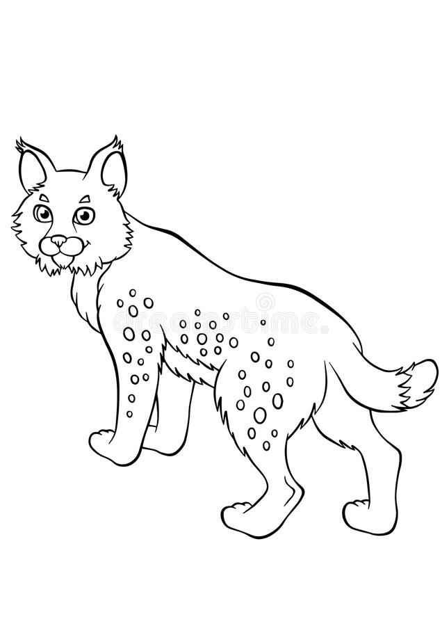 Coloring pages. Animals. Little cute lynx. stock illustration