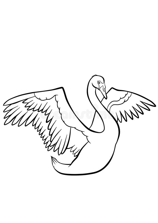 Download Coloring Pages Birds Cute Beautiful Swan Stock Vector