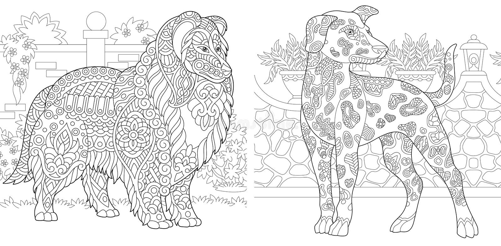 Coloring Pages. Coloring Book for adults. Colouring pictures with Rough Collie and Dalmatian dogs. Antistress freehand sketch. Drawing with doodle and zentangle stock illustration