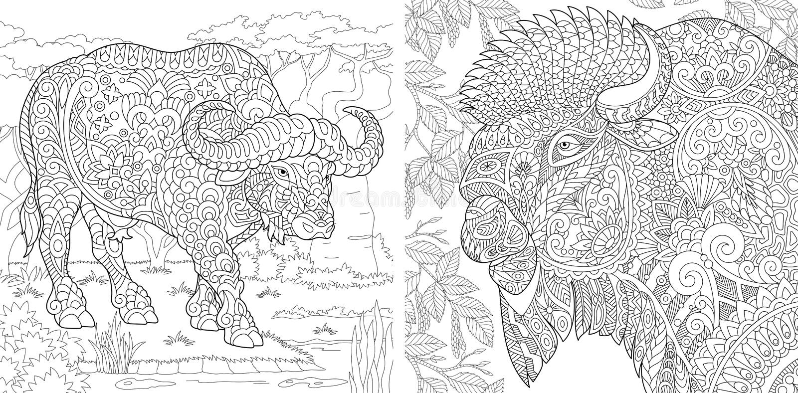 Coloring Pages. Coloring Book for adults. Colouring pictures with buffalo and bison. Antistress freehand sketch drawing with stock images
