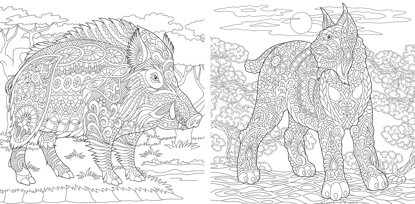 Coloring Pages. Coloring Book for adults. Colouring pictures with wildcat and wild boar. Antistress freehand sketch drawing with stock illustration