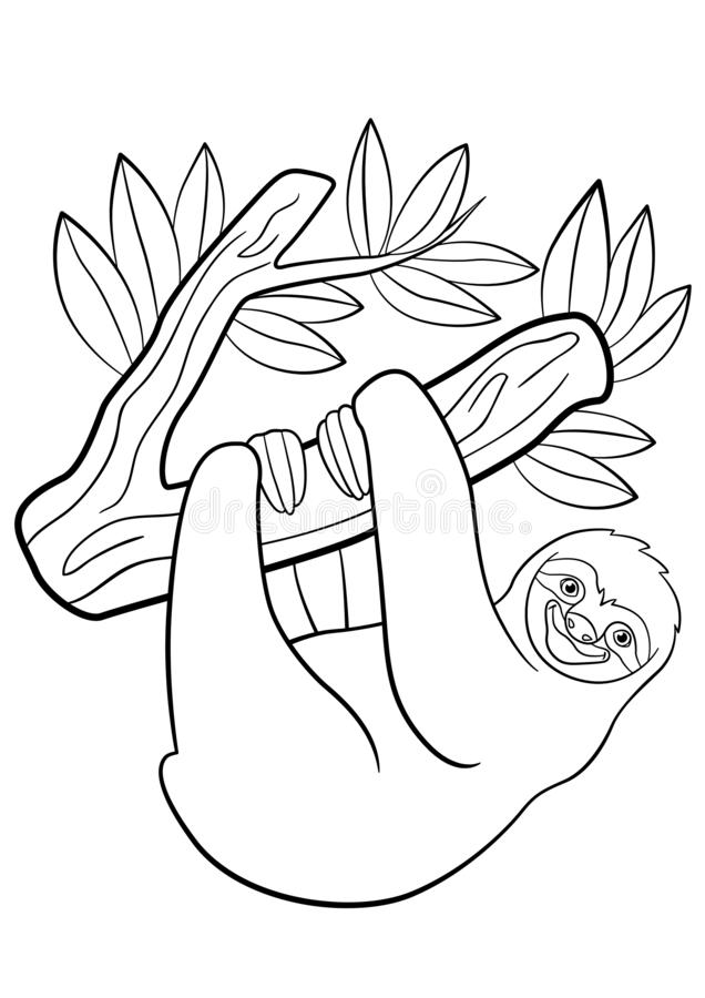 Coloring pages. Cute lazy sloth hangs on the tree. And smiles royalty free illustration