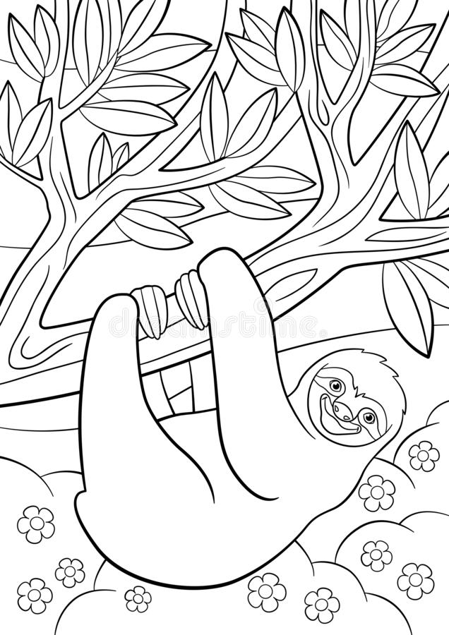 Coloring pages. Cute lazy sloth on the tree. Coloring pages. Cute lazy sloth hangs on the tree and smiles vector illustration