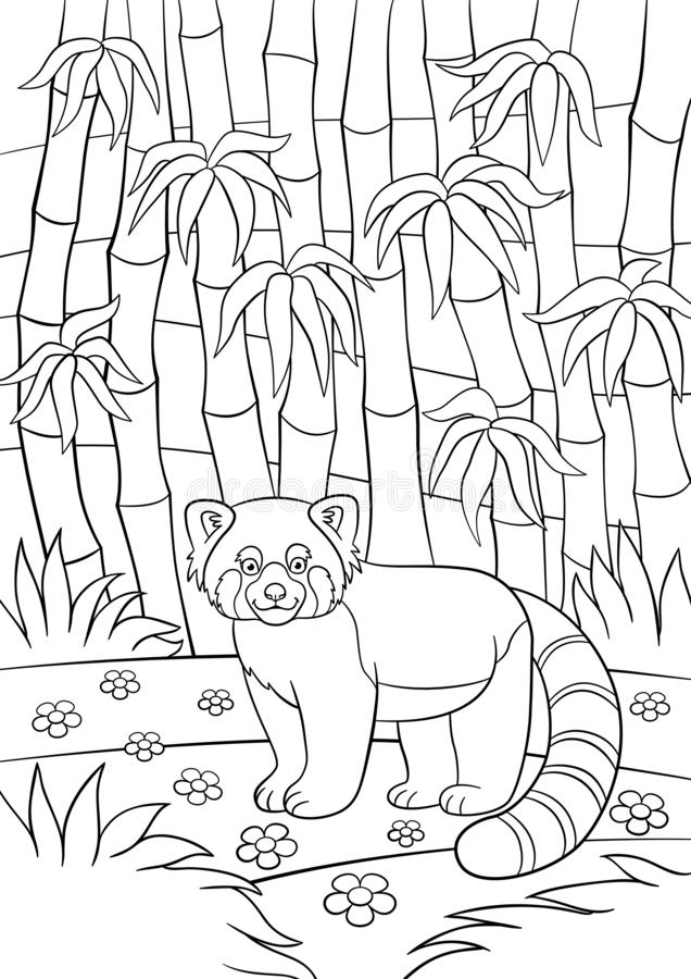 Panda Coloring Pages For Adults - Coloring Home | 900x636