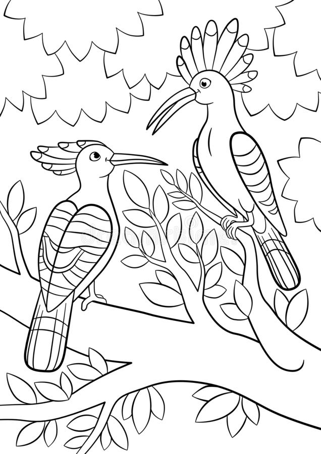 Coloring pages. Two beautiful hoopoes sit on the tree branch royalty free illustration