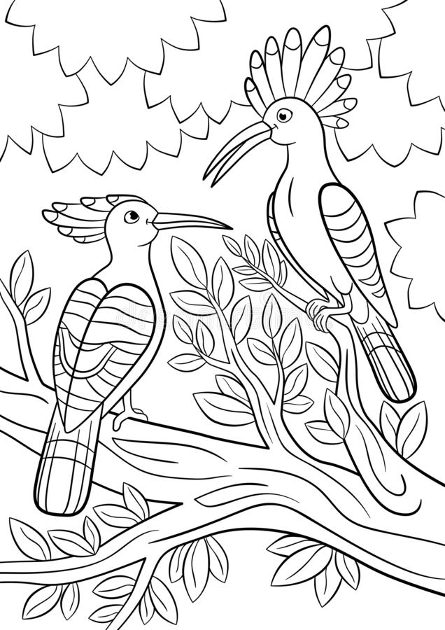 Coloring pages. Two beautiful hoopoes sit on the tree branch vector illustration
