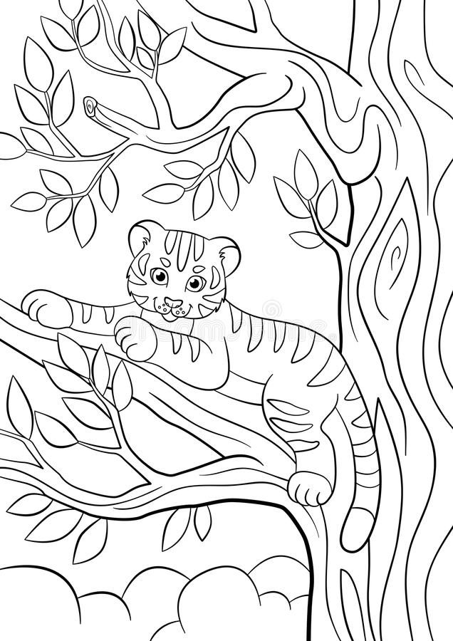 coloring pages wild animals little cute baby tiger stock vector