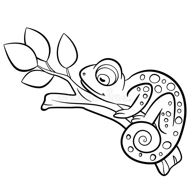 coloring pages animals chameleon sleeps