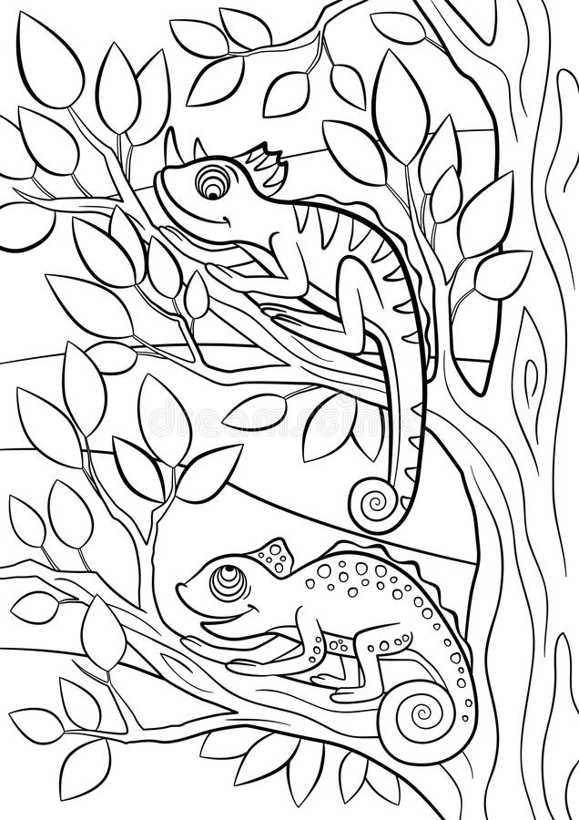 Coloring Pages Wild Animals Two Little Cute Chameleon
