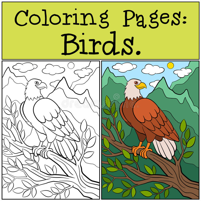Coloring Pages: Wild Birds. Cute bold eagle sits and smiles. Coloring Pages: Wild Birds. Cute bold eagle sits on the tree branch and smiles vector illustration