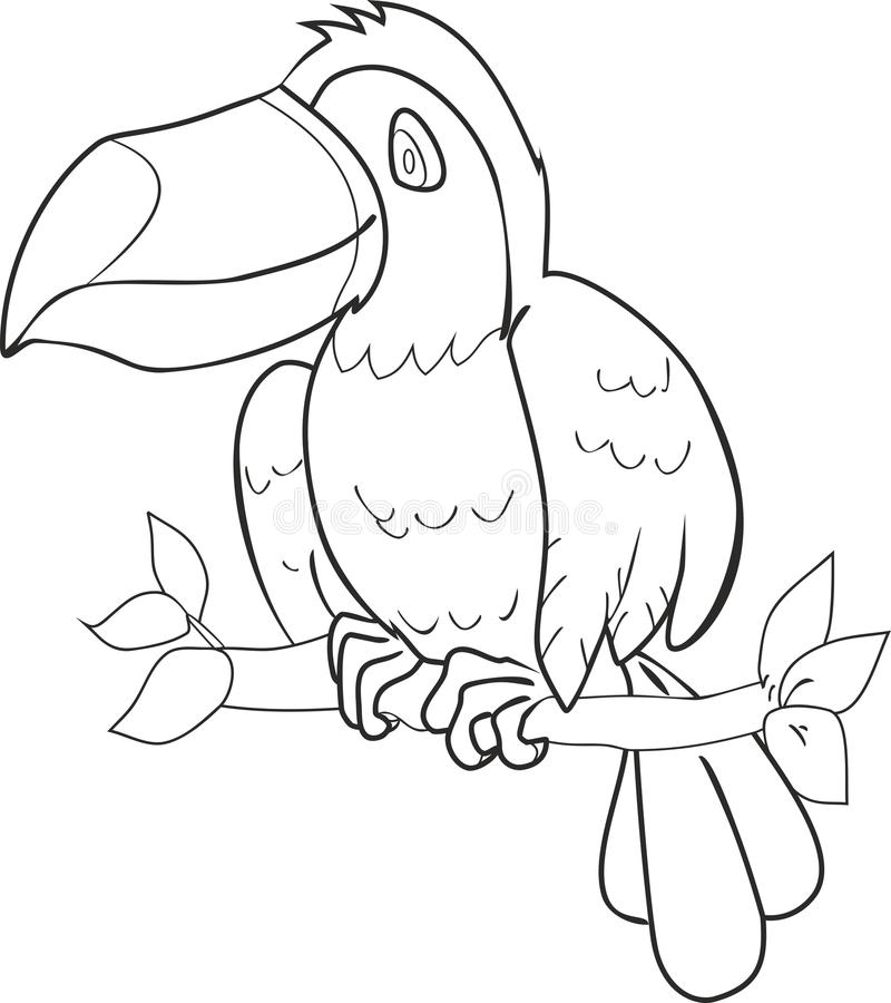 Coloring with toucan. Cute toucan sitting on tree branch royalty free illustration