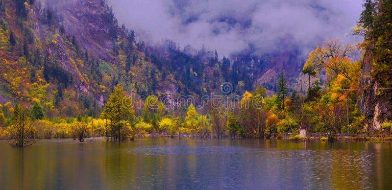 Colorized jeziora i gaj fotografia royalty free