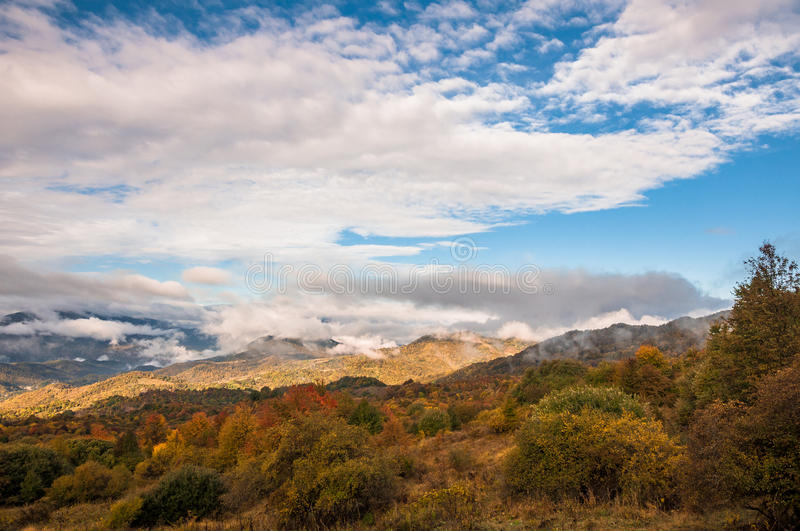 Colors of autumn in Georgia. The end of October 2015. royalty free stock photography
