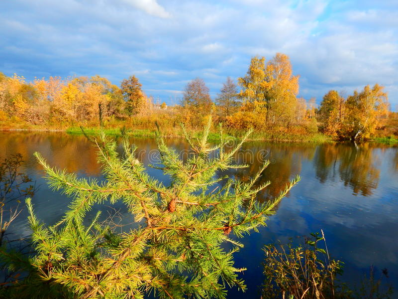 The colors of autumn stock photography