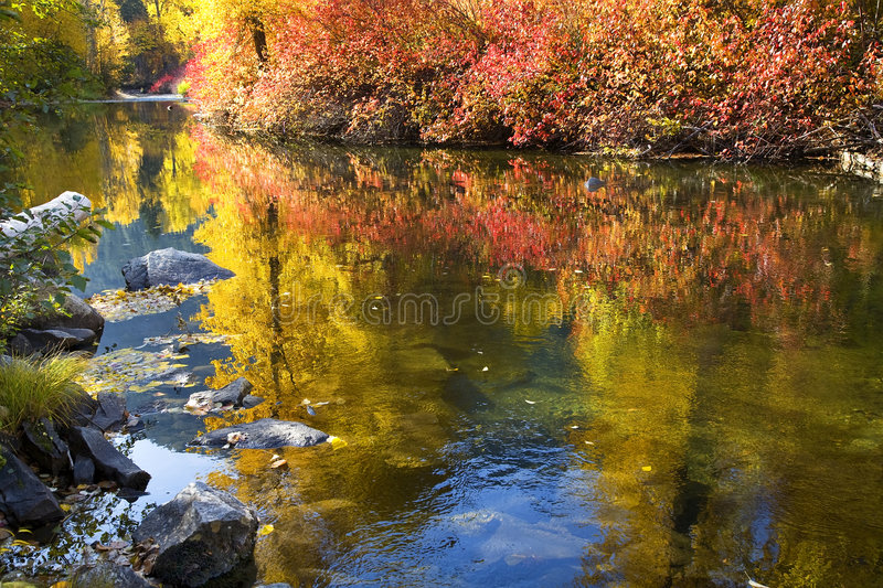 colors den Fall River washington wenatcheen royaltyfria bilder
