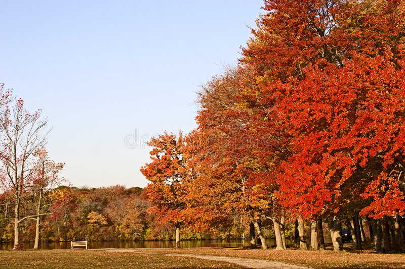 Download Colors of Fall stock image. Image of descriptive, serene - 3463589