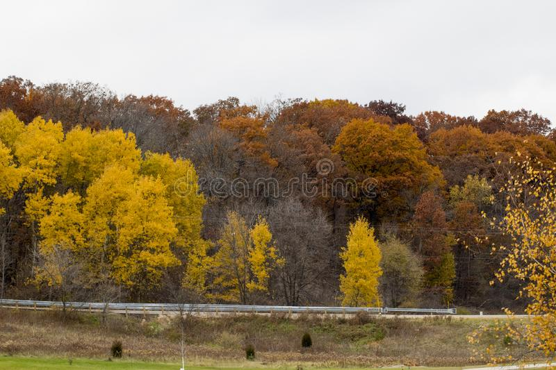 The Colors of Fall in the Midwest royalty free stock image