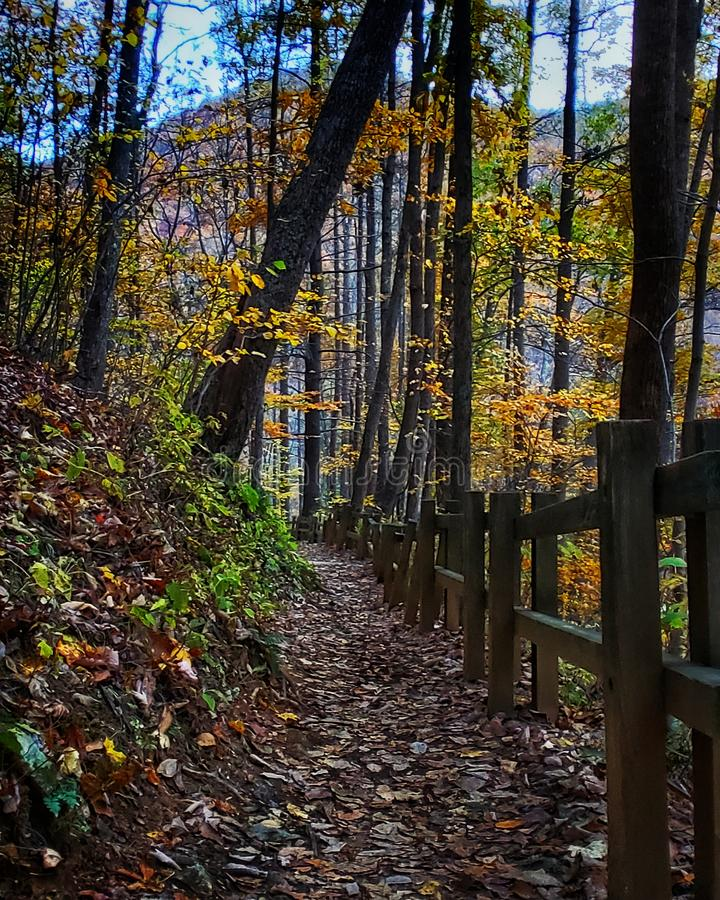 Autumn mountain landscape along a hiking path with wood fence. stock image