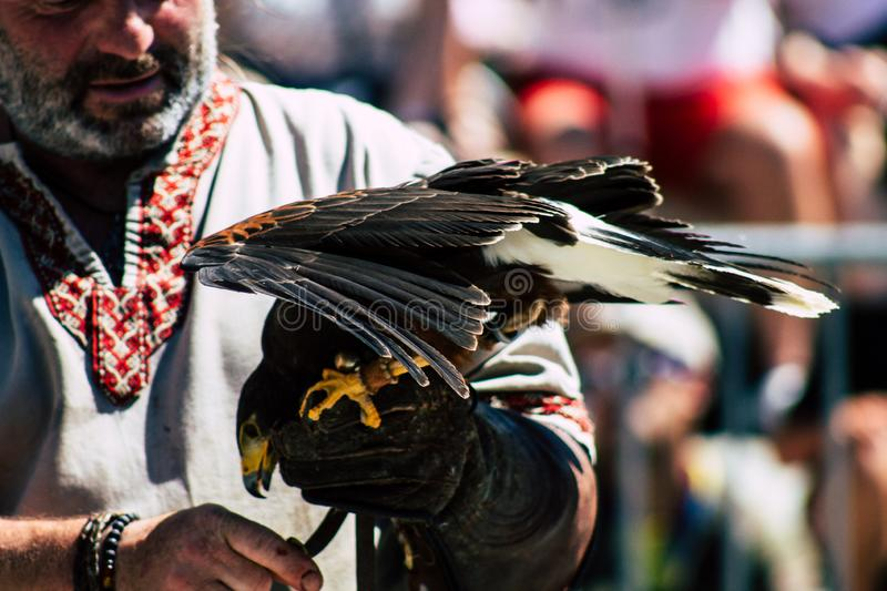 Colors of France. Reims France June 2, 2019 Closeup of a falconer and a raptor participating in a falconry show in the streets of Reims in the afternoon stock photo