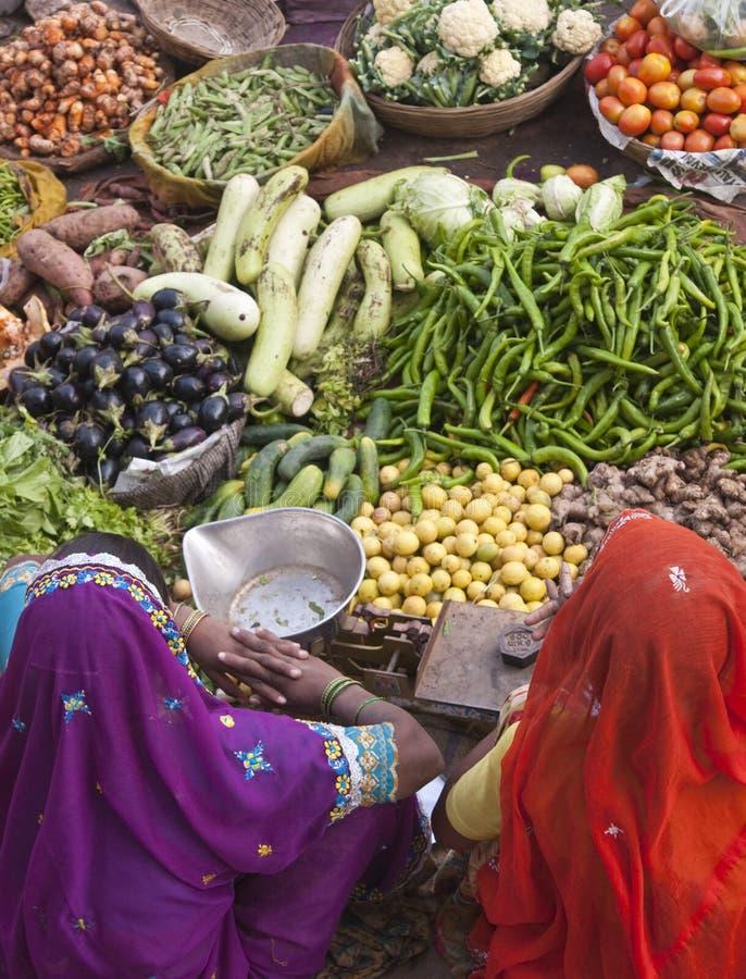 colors india royaltyfri foto