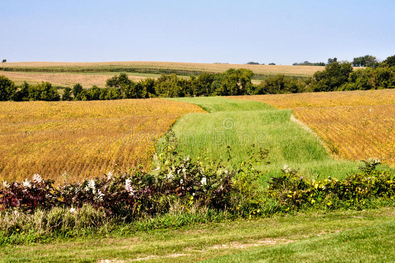 Colors of Iowa royalty free stock image