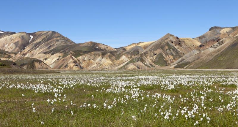 Download Colors Of Landmannalaugar, Iceland Stock Image - Image: 26147993