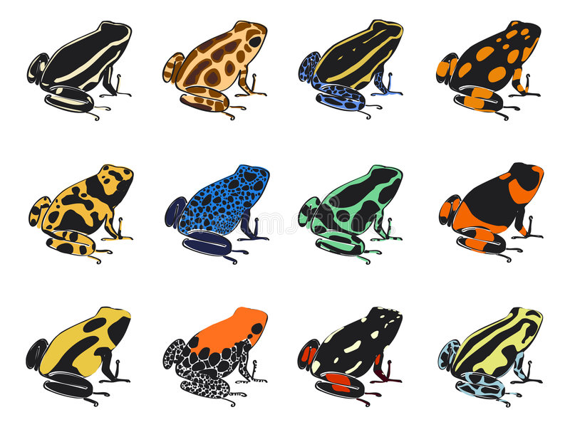 Colors and patterns of poison-dart frogs stock illustration