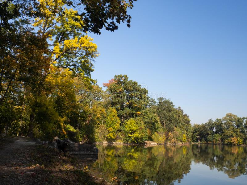 Colorufl trees in autumn by lake in evening sun. Autumn by lake with colorful trees in evening light and blue sky stock photography