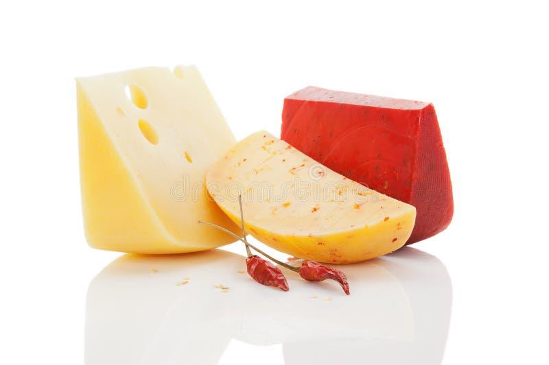 Colorul heller Käsehintergrund. lizenzfreie stockfotos