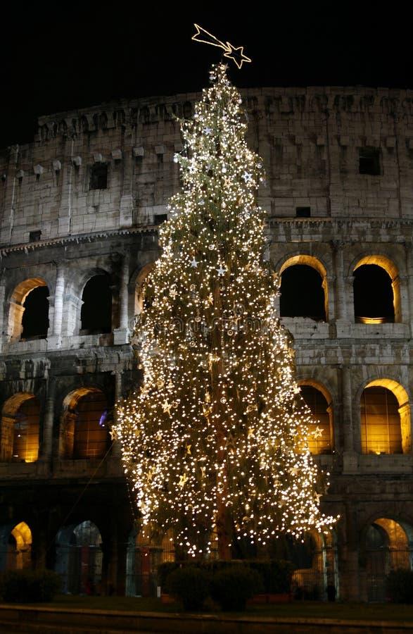 Colosseo mit Weihnachtsbaum nachts. Rom, Italien stockfotografie