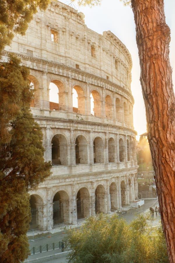 Colosseum en Roma Italia asoleado fotos de archivo