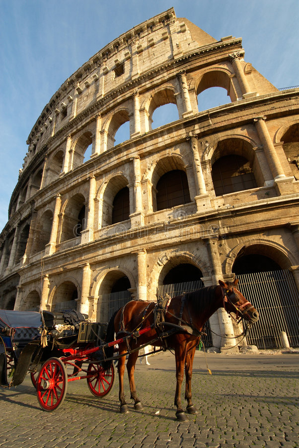 Colosseum and horse royalty free stock images
