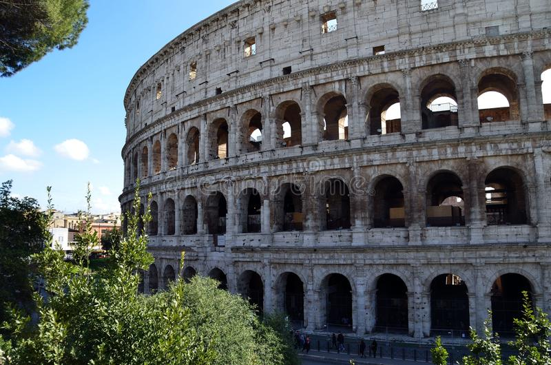 Colosseum in a natural frame royalty free stock image