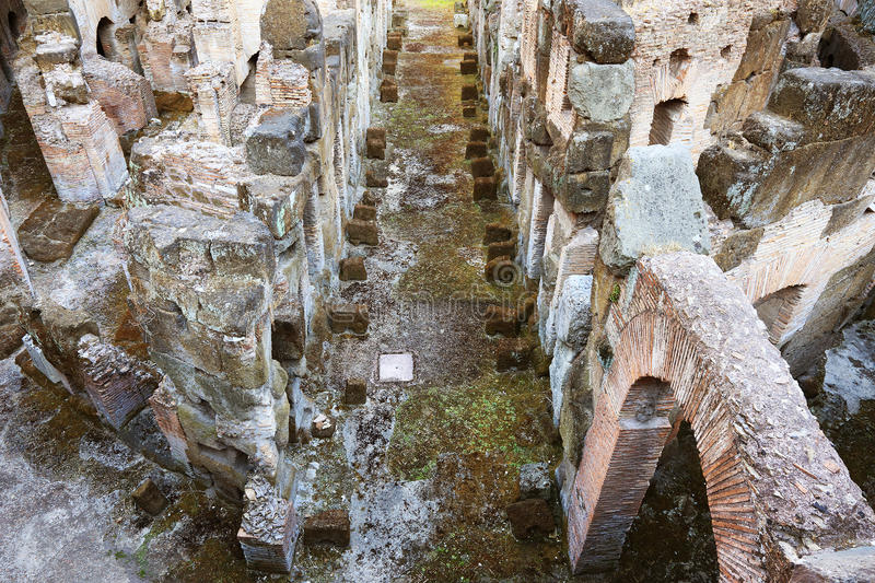 Colosseum in Rome stock images