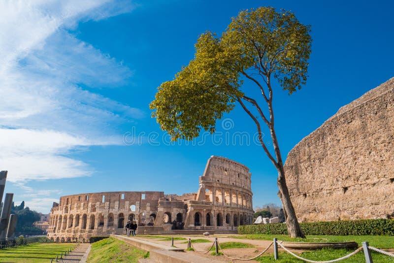 Colosseum según lo visto de la colina de Palatine en Roma, Italia fotos de archivo
